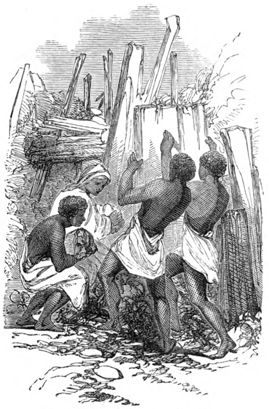 Mary Ann Serrett Barber wrote her book about the farming village, Osiele, to the east of Abeokuta. She never traveled to West Africa. She compiled her materials from the journals and letters of Henry Townsend, who was based at Abeokuta between 1846 and 1867; and Charles Andrew Gollmer who was based there between 1845 and 1861. They worked closely with Samuel Ajayi Crowther. This engraving is a depiction of men repairing the walls typically built around towns in the hinterland of the eastern bight.