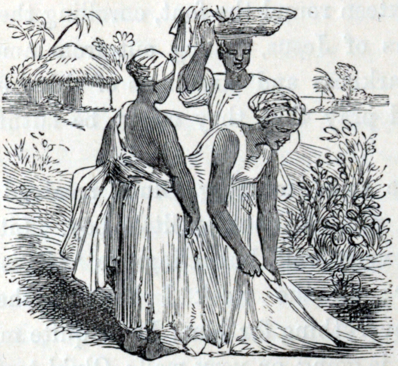 Anna Martin Hinderer (1827–1870) was a British missionary to Ibadan in Nigeria. In 1852, she and her husband, David, set out to establish a new mission in the Bight of Benin hinterland. Anna briefly stayed at Abeokuta. In 1853, she arrived in Ibadan where they built a Christian settlement. In the 1850s, David estimated Ibadan's population was around 55,000. Anna would teach in the school that they built and she would run the mission when David was away preaching or trying to translate the New Testament. Her husband could speak Yoruba and he was on good terms with the local dignitaries. This advantage meant that the children of local chiefs attended and sometimes boarded at the school which Anna ran. The first two Christian converts were Yejide and Akielle who were the son and daughter of a local chief. Although the engraving is from the mid nineteenth century, this image depicts women washing clothes by a river and carrying baskets on their head.